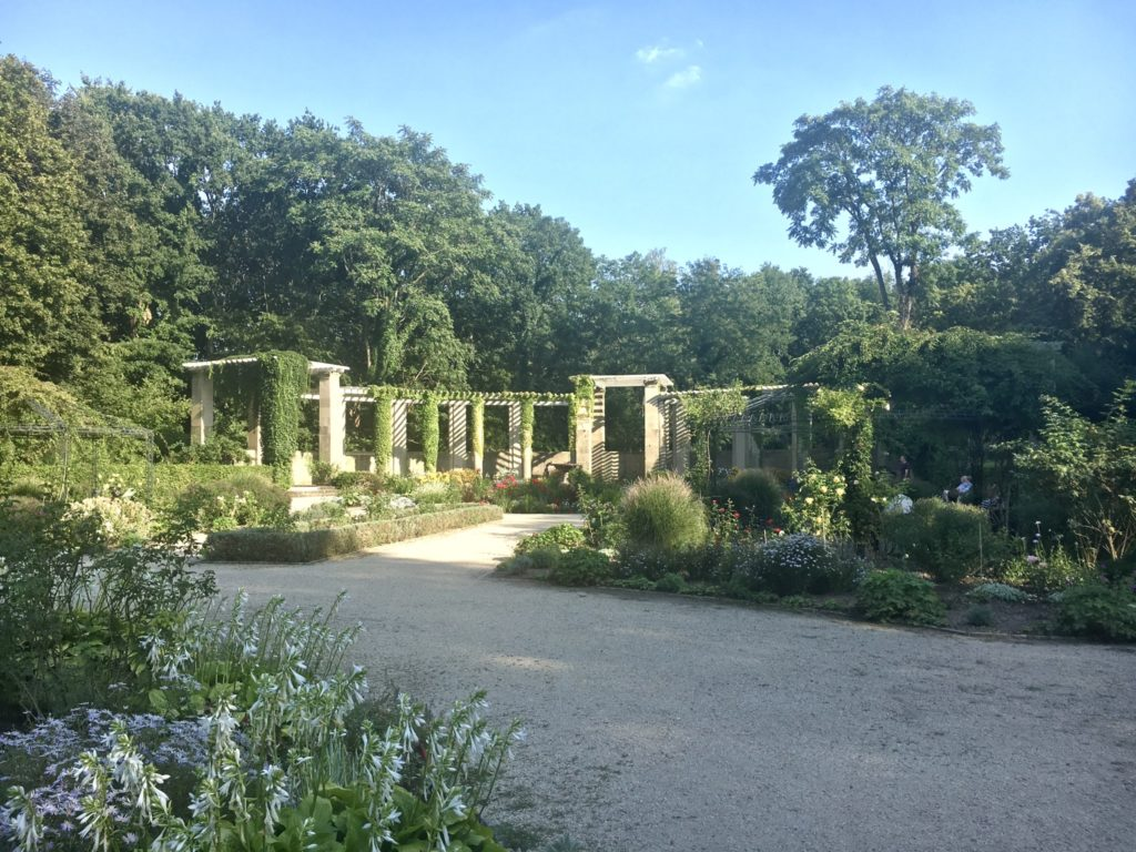 Rosengarten im August 2019